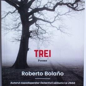 Roberto Bolano - Trei