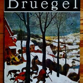 Album - Pieter Bruegel (editie hardcover)
