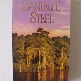 Danielle Steel - Luminile Sudului