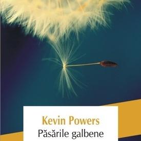 Kevin Powers - Pasarile galbene