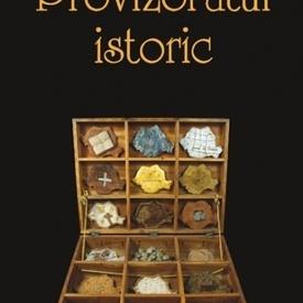 Principele Radu al Romaniei - Provizoratul istoric
