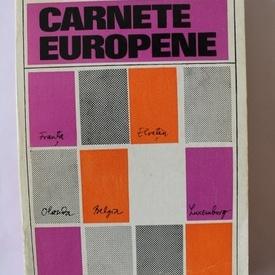 Adrian Marino - Carnete europene