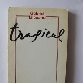 Gabriel Liiceanu - Tragicul