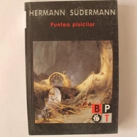 Hermann Sudermann - Puntea pisicilor