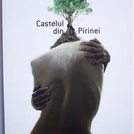 Jostein Gaarder - Castelul din Pirinei