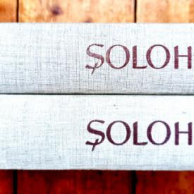 Mihail Solohov - Donul linistit (2 vol., editie hardcover)