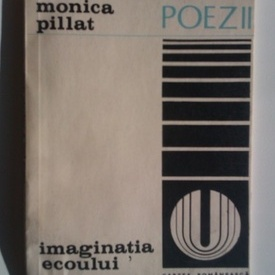 Monica Pillat - Imaginatia ecoului