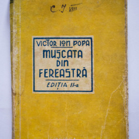 Victor Ion Popa - Muscata din fereastra