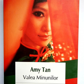 Amy Tan - Valea Minunilor