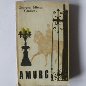 Georgeta Mircea Cancicov - Amurg