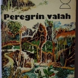 Gheorghe Tomozei - Peregrin valah