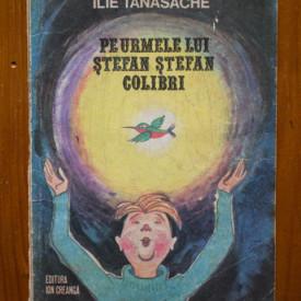 Ilie Tanasache - Pe urmele lui Stefan Stefan Colibri