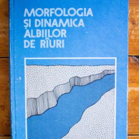 Ionita Ichim, Dan Batuca, Maria Radoane, Didi Duma - Morfologia si dinamica albiilor de rauri (editie hardcover)