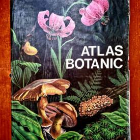 Lucia Popovici, Constanta Moruzi, Ion Toma - Atlas botanic (editie hardcover)