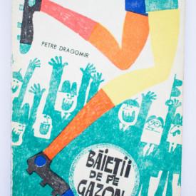 Petre Dragomir - Baietii de pe gazon