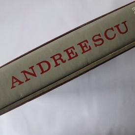 Radu Bogdan - Andreescu (album in caseta speciala)