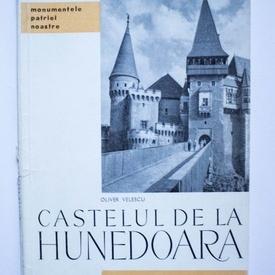 Oliver Velescu - Castelul de la Hunedoara
