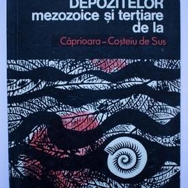 A. Dusa - Stratigrafia depozitelor mezozoice si tertiare de la Caprioara-Costeiu de Sus
