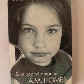 A. M. Homes - Sunt copilul amantei