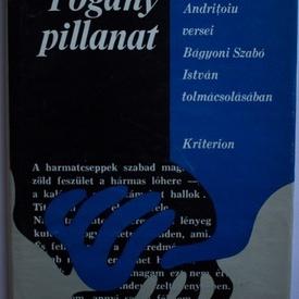 Alexandru Andritoiu - Pogany pillanat (editie hardcover)