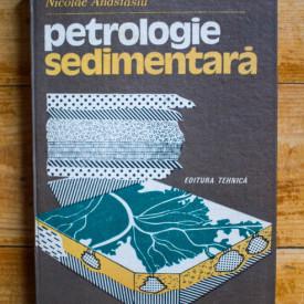 Dr. Nicolae Anastasiu - Petrologie sedimentara (editie hardcover)