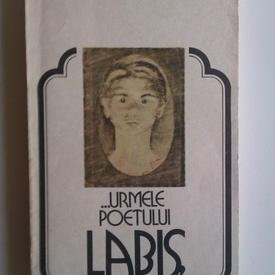 Gheorghe Tomozei - ...Urmele poetului Labis