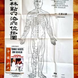 Liviu Tilica - Tehnici secrete din Shaolin. Atingerea punctelor vitale