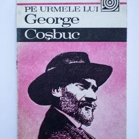 Lucian Valea - Pe urmele lui George Cosbuc