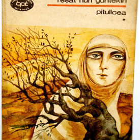Resat Nuri Guntekin - Pitulicea (vol. I)