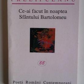 Nicolae Prelipceanu - Ce-ai facut in noaptea Sfantului Bartolomeu