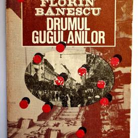 Florin Banescu - Drumul Gugulanilor (Strada)