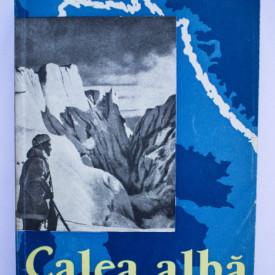 Hans Albert Forster - Calea alba. Exploratorii cuceresc Arctica