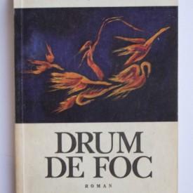 Henriette Yvonne Stahl - Drum de foc