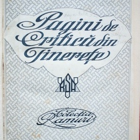 Nicolae Iorga - Pagini de critica din tinerete (editie hardcover, interbelica, frumos relegata)