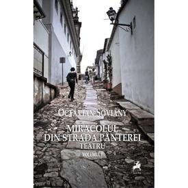 Octavian Soviany - Miracolul din Strada Panterei. Teatru I