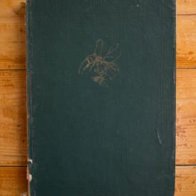 P. Raicu, M. Nachtigal - Citogenetica. Principii si metode (editie hardcover)