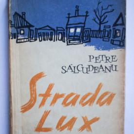 Petre Salcudeanu - Strada lux
