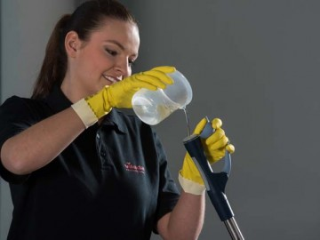Poze SprayPro Inox Vileda professional