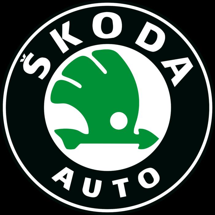 Kit Directie Skoda