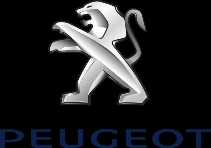 Kit Directie Peugeot