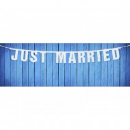 Banner nunta Just Married