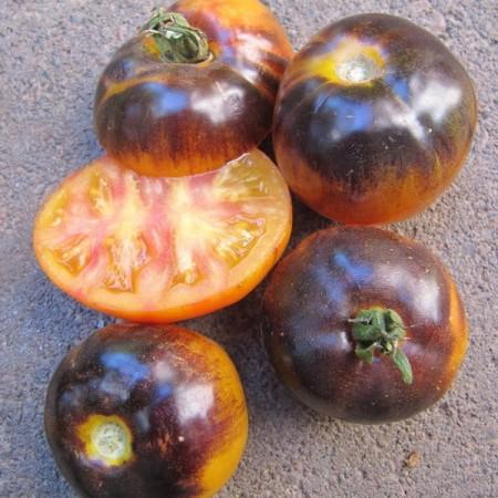 Poze Tomate Blue Gold