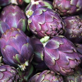 Poze Anghinare violet