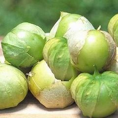 Poze Physalis philadelphica-Cherry Tomatillo verde
