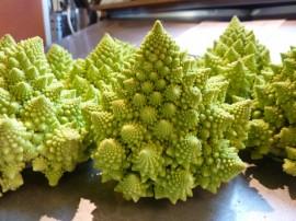 Poze Broccoli Romanesco