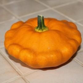 Dovlecel Patison portocaliu