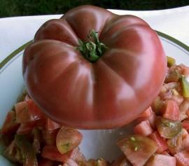 Poze Tomate Cherokee Purple