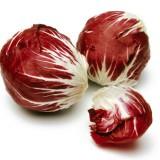 Radicchio-Cicoare rosie