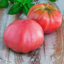 Tomate Brandywine Pink