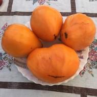 Tomate Inima de Bou Orange
